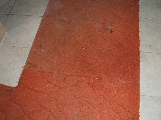 Seren Sari Hotel: Hallway carpets filthy