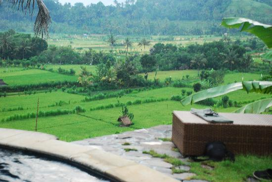 Kubu Carik Bali: View over terraces from pool
