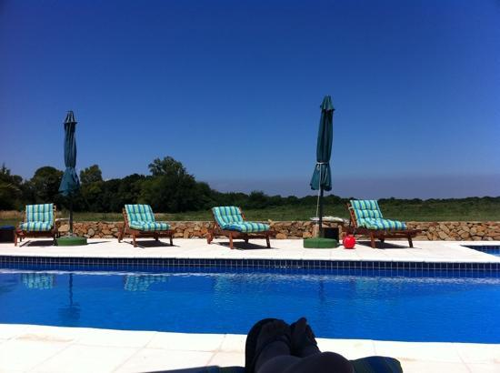 Casa Los Jazmines: poolside