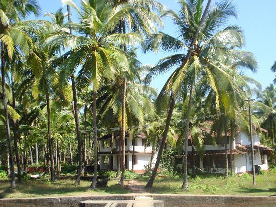 Kannur Beach House : the house