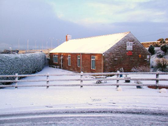 Alexander House: Winter 2009