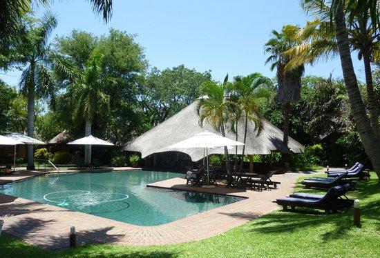 Aha Sefapane Lodge and Safaris: swimming pool
