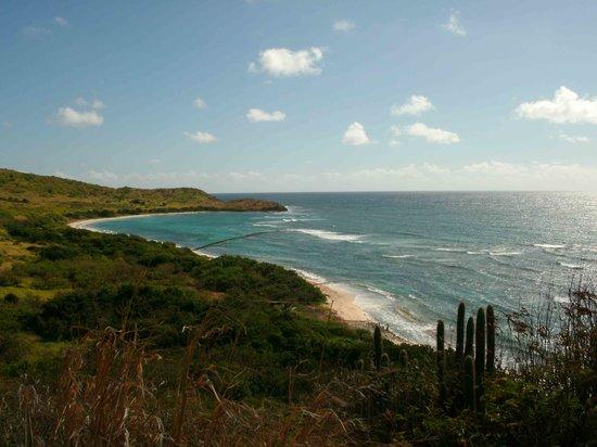 Isaac Bay