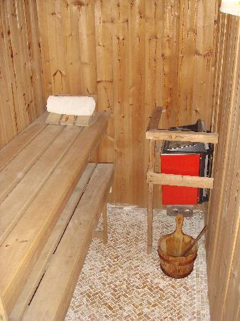 Grinzing Lodge: Inside Sauna