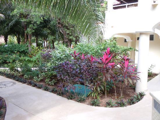 https://media-cdn.tripadvisor.com/media/photo-s/01/c3/6f/32/beautiful-gardens.jpg Au