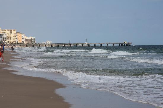 Surfside Resort : beach