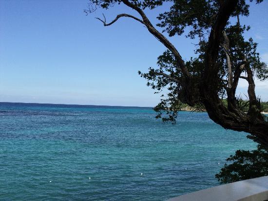 Jamaica Inn: View from near the spa