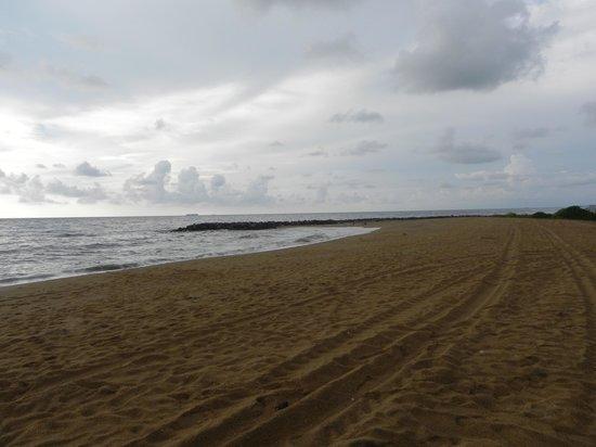 AVANI Kalutara Resort: L'Océan Indien