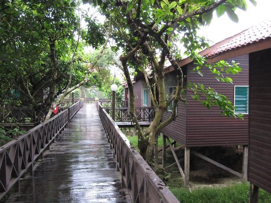 Kinabatangan Riverside Lodge照片