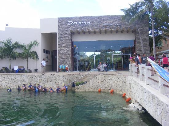 Puerto Aventuras, Mexico: the dolphinarium