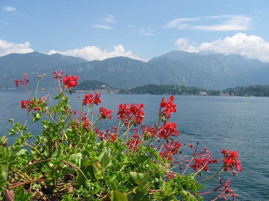 Best Western Hotel Continental: Panorama Lago di Como/BEAUTIFUL