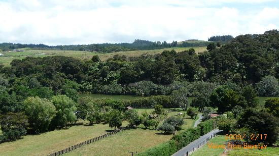 Baystay B&B: View over Waitangi River from deck