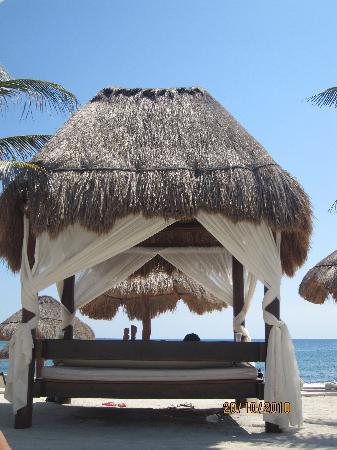 """Grand Palladium Riviera Resort & Spa: la """"hamaca"""" de otras d elas piscinas!"""