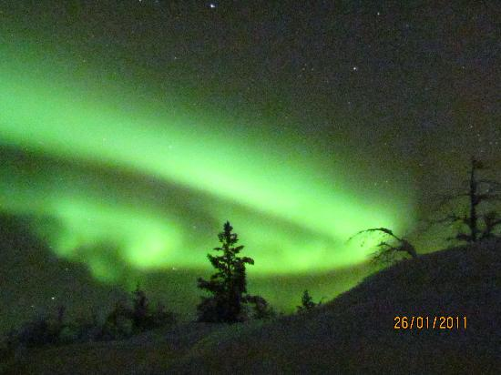 Davvi Arctic Lodge: Northern Lights