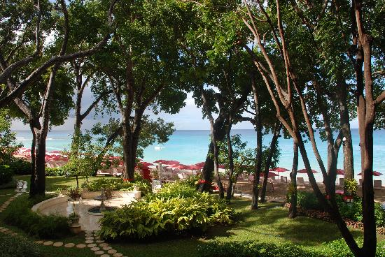 Sandy Lane Hotel: The view from our room