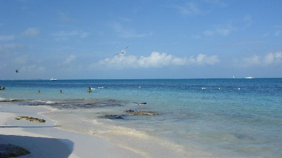 Dos Playas Hotel Cancun: Gorgeous white sand beaches