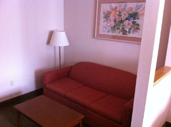 Comfort Suites Sugar Land: the sofa(pulls out)/coffee table area