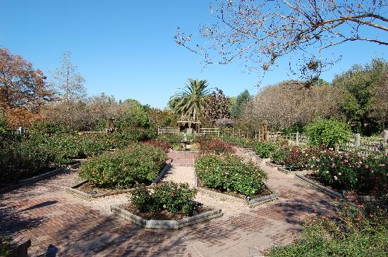 One Of The Gardens Picture Of San Antonio Botanical Garden San Antonio Tripadvisor