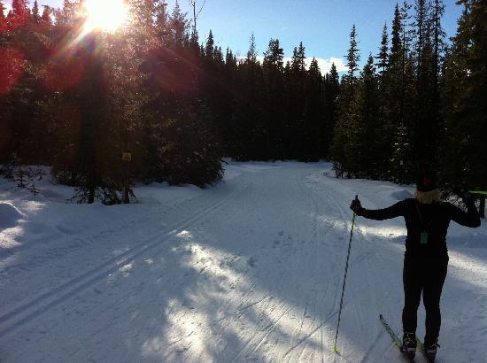 Caledonia Nordic Ski Club: Taking a break at the iceman cutoff junction