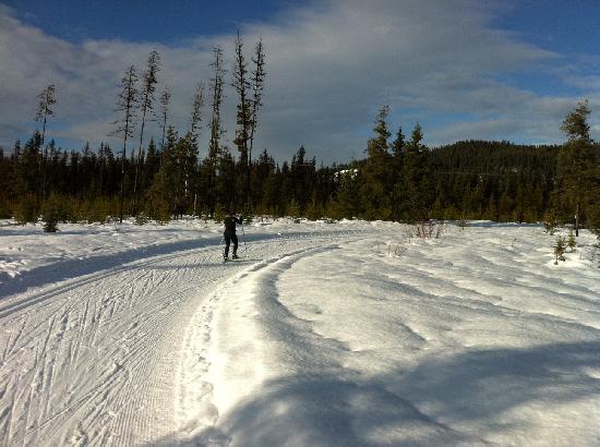 Caledonia Nordic Ski Club: At the Finger tip