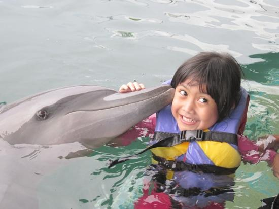 Bali Dolphins: a kiss from vida..