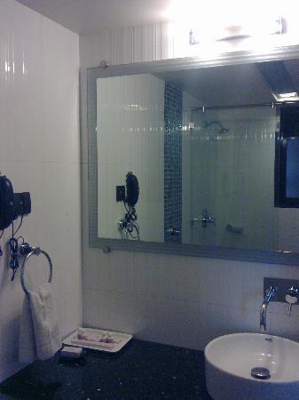 Hotel Silver Inn: Wash Room