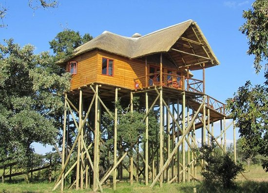 Pezulu Tree House Game Lodge: Pezulu Tree House/Mountain View Treehouse