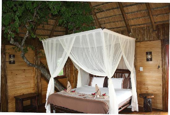 Interior Pezulu Tree House Game Lodge