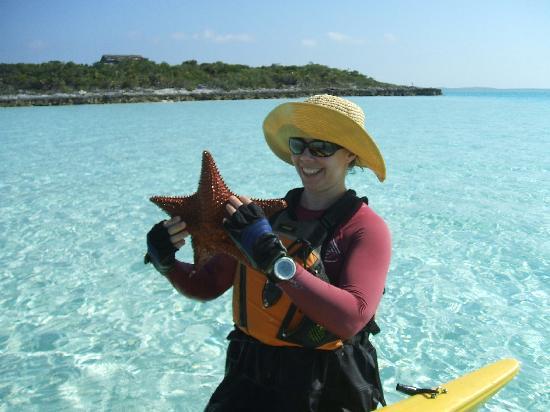 Great Exuma: Starfish off Musha Cay