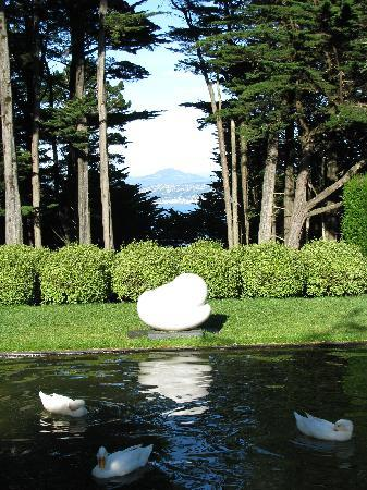 Larnach Castle & Gardens: in front of the castle