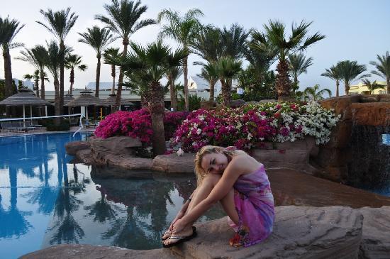 Sierra Sharm El Sheikh : beautiful sierra pool view