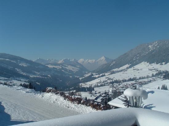 Bergwald: Aussicht_view
