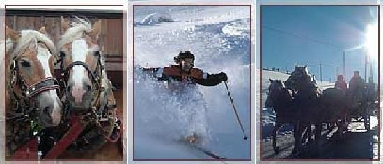 Bergwald: Skiing_horse_sleigh_rides_tobboganing