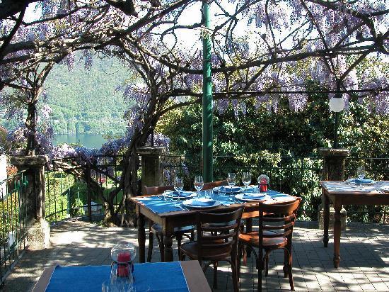 La terrazza - Picture of Trattoria del Glicine, Cernobbio - TripAdvisor