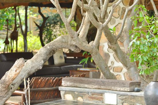 Ezulwini Game Lodges: Bar/lounging area