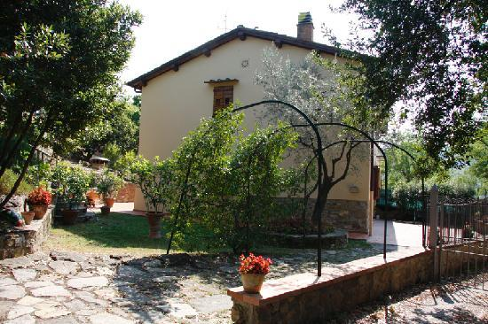 A Casa di Olivo: il giardino