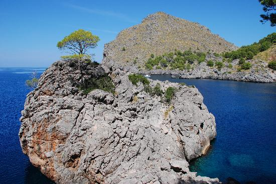 Majorka, Hiszpania: Sa Calobra 5