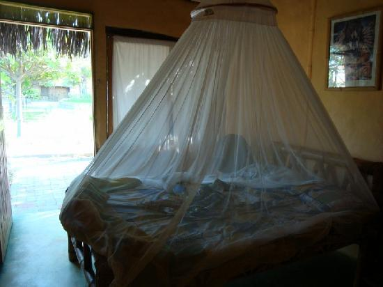 Laguna Surf Camp: Protección para mosquitos