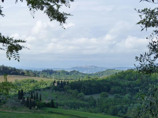 Le Fonti a San Giorgio: View to San Gimignano from Le Fonti