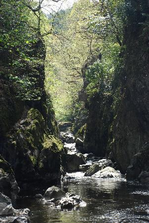 ‪‪Betws-y-Coed‬, UK: Fairy Glen‬