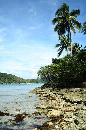 Snake Island (Vigan Island)