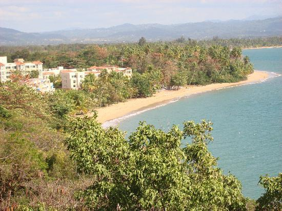 Rincon Beach Resort: view from the viewing tower up the road