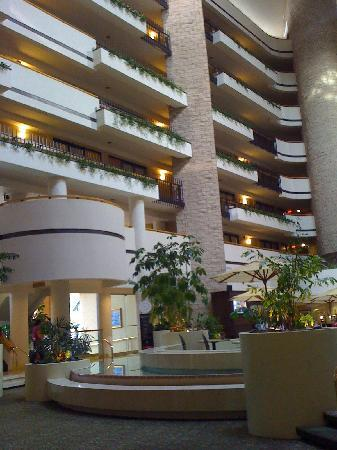 Embassy Suites by Hilton Orlando - International Drive / Jamaican Court: Cozy Areas to Gather with Friends
