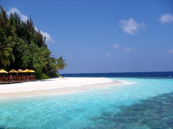 Angsana Ihuru, Maldives : angsana ihuru- the sea from the resort