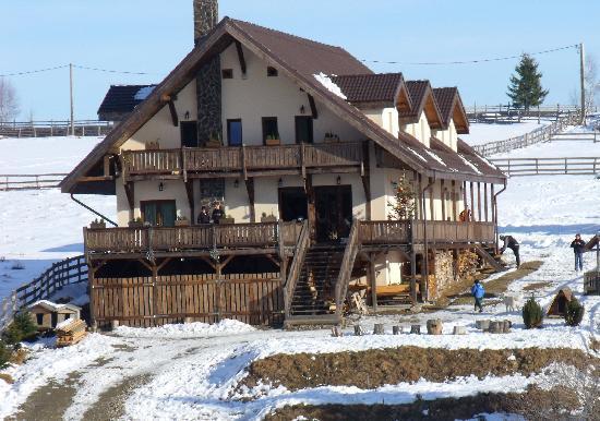 Cabana Motilor: Отель
