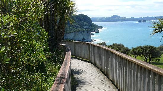 Hahei Horizon Bed & Breakfast: Wanderung zur Cathedrale Cove
