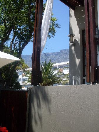 the amazing view of table mountain from the poolside