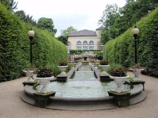 Botanical Gardens Flora : Flora