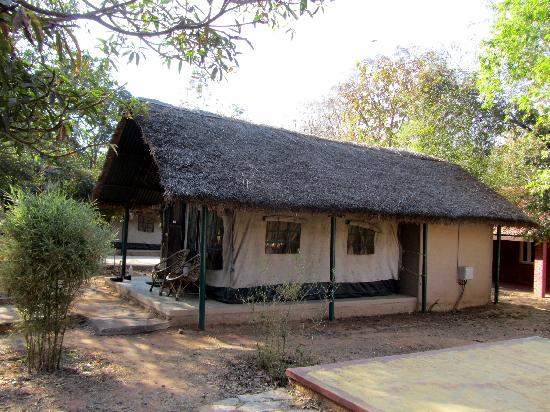 Bannerghatta Nature Camp: Tent side view