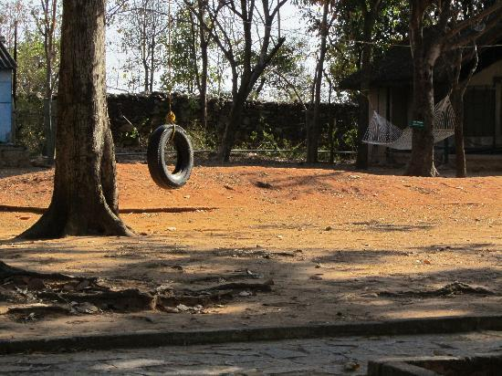 Bannerghatta Nature Camp: Tire slung from tree and hammock